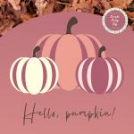 Hello, pumpkin: look up and wonder